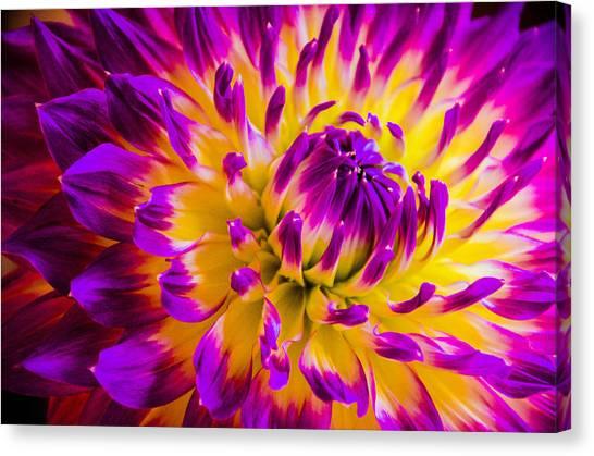 Macro Flora Canvas Print