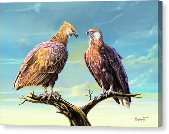 Madagascar Fish Eagle  Canvas Print