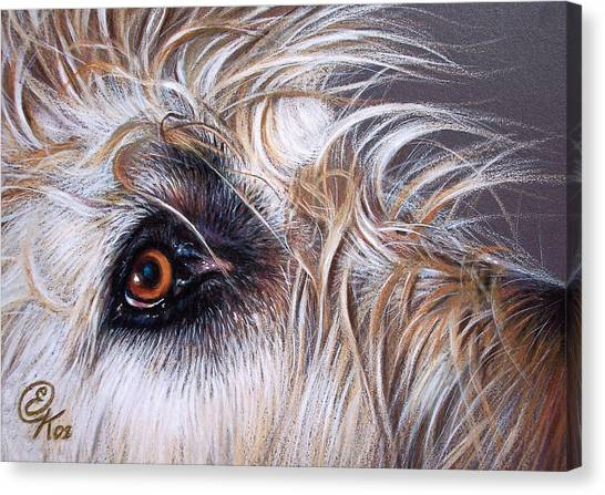 Maddie Canvas Print