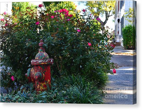 Madison Fire Hydrant Canvas Print