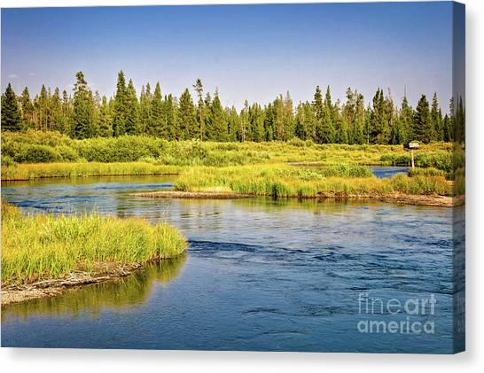 Yellowstone National Park Canvas Print - Madison River by Delphimages Photo Creations