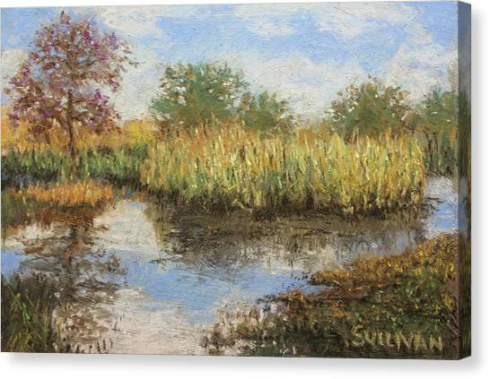 Madrona Morning Canvas Print