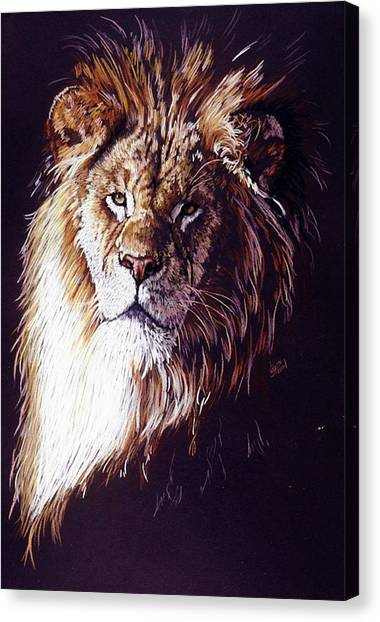 Canvas Print - Maestro by Barbara Keith