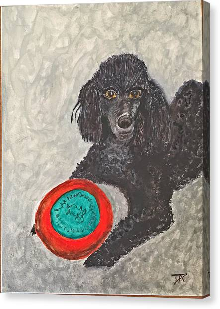 Maggie And Her Frisbee Canvas Print