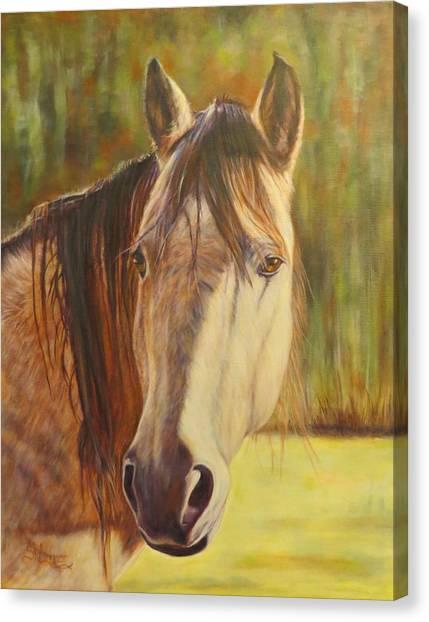 Maggie, Horse Portrait Canvas Print