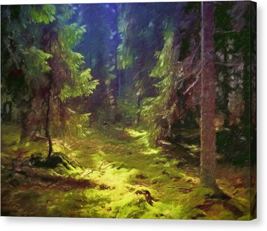 Mossy Forest Canvas Print - Magic Forest by Lutz Baar
