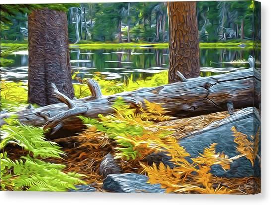 Magic Light Lake Canvas Print