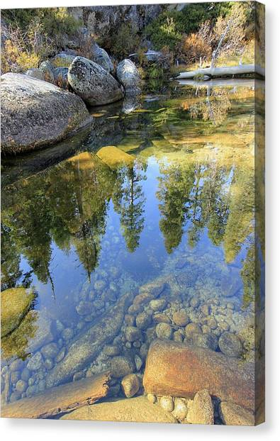 Canvas Print featuring the photograph Magic Light On Big Silver by Sean Sarsfield