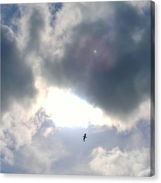 Animals Canvas Print - Magical #clouds Today :-) #sky #weather by Shari Warren