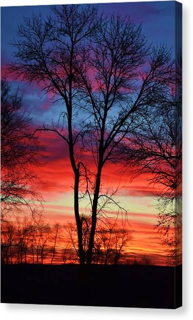 Magical Colors In The Sky Canvas Print
