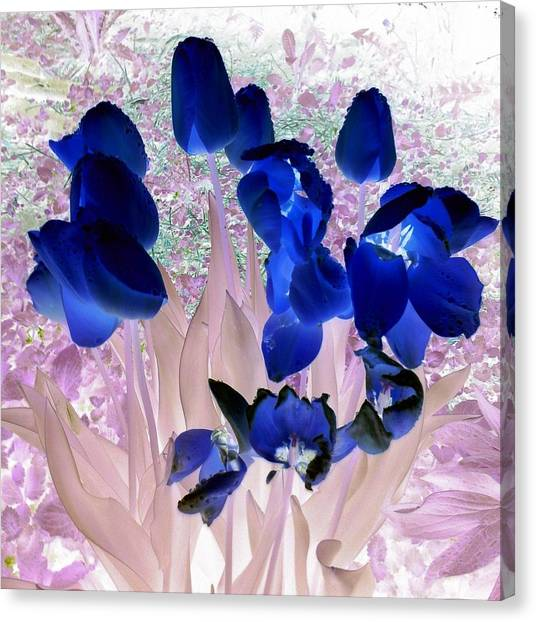 Canvas Print - Magical Flower I I by Orphelia Aristal