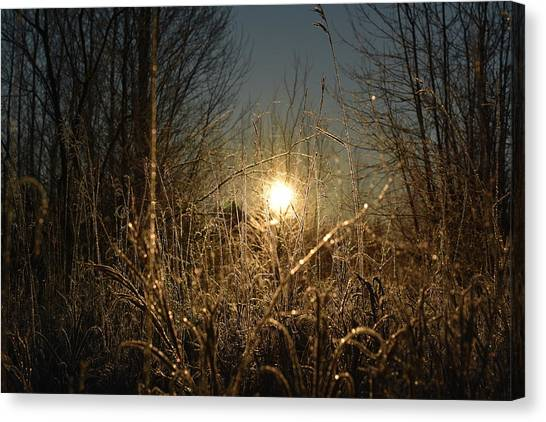 Magical Sunrise Canvas Print