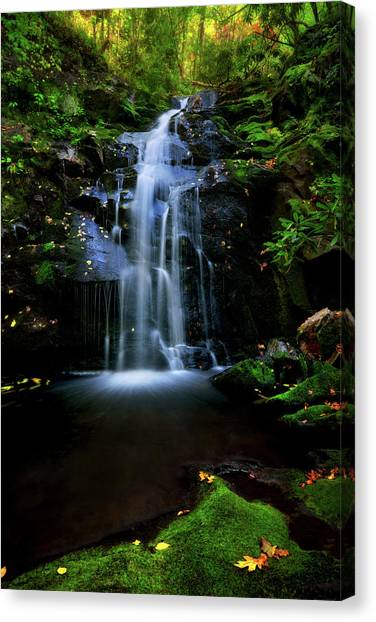 Magical Waterfall Above Spruce Falls In Tremont Smoky Mountains Tennessee  Canvas Print