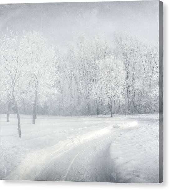 magical Winter day Canvas Print