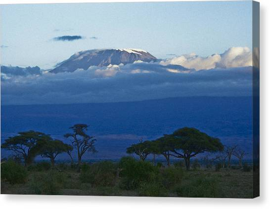 Magnificent Kilimanjaro Canvas Print