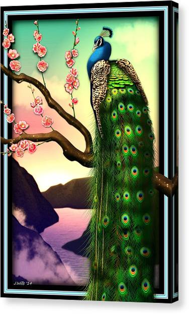 Magnificent Peacock On Plum Tree In Blossom Canvas Print