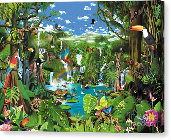 Toucans Canvas Print - Magnificent Rainforest by Gerald Newton