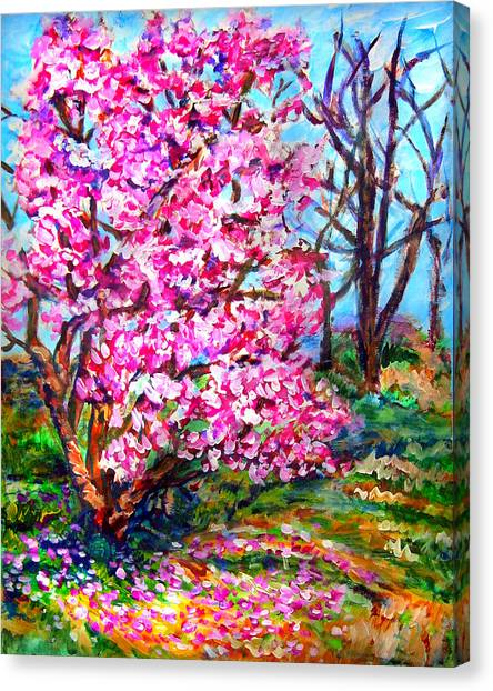 Magnolia - Early Spring Canvas Print by Laura Heggestad