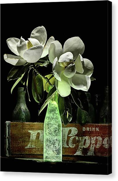Dr. Pepper Canvas Print - Magnolia And Dr Pepper Bottle Still Life by JC Findley