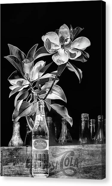 Cheerwine Canvas Print - Magnolia Cheerwine Still Life Black And White by JC Findley