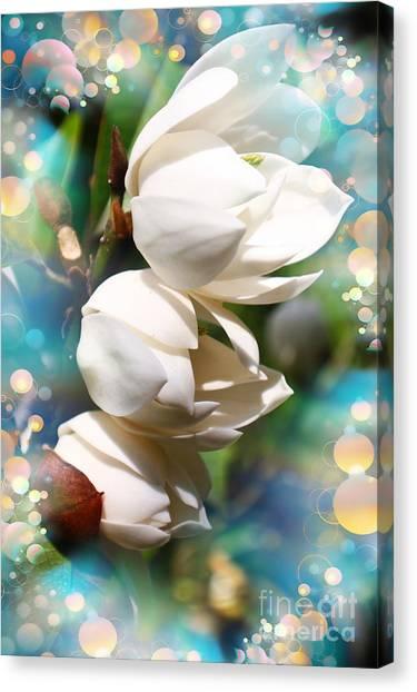 Occur Canvas Print - Magnolia Mirage by Trudee Hunter