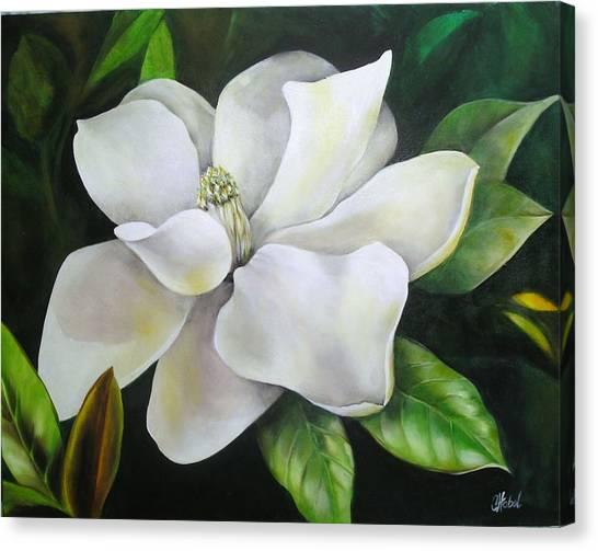 Magnolia Oil Painting Canvas Print