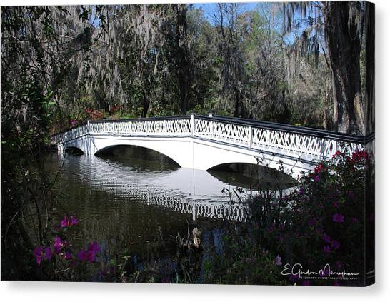 Magnolia Plantation Bridge Canvas Print