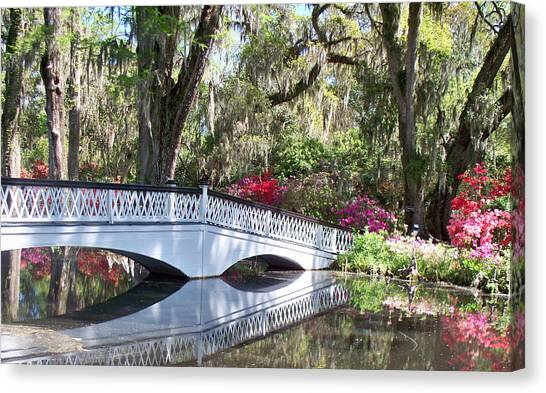 Magnolia Plantation Series 1 Canvas Print by Melanie Snipes