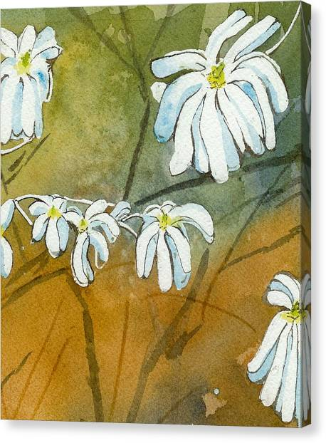 Magnolias 1 Of 3 Canvas Print