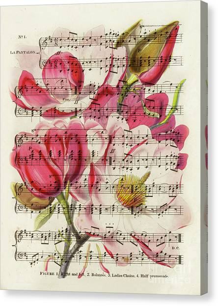 Blossom Canvas Print - Magnolias And Music Sheet by Delphimages Photo Creations