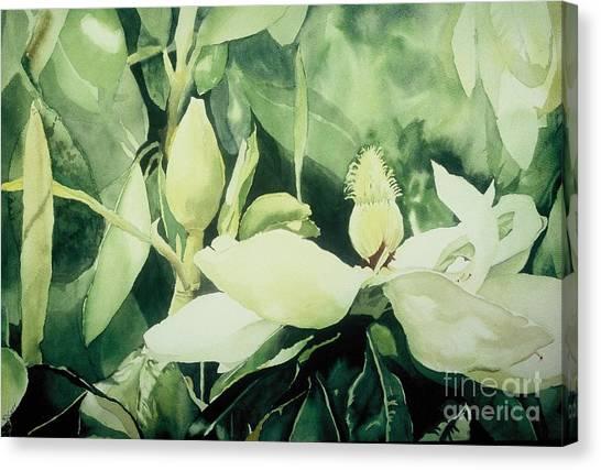 Magnolium Opus Canvas Print