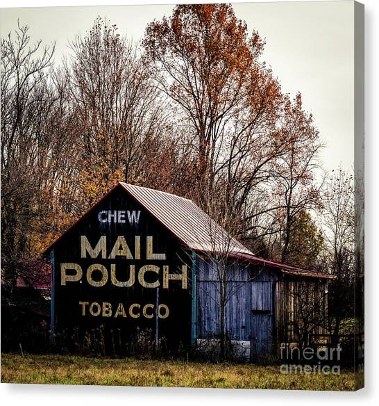 Mail Pouch Barn Art (Page #5 Of 7)