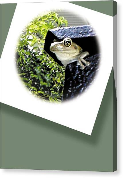 Mailbox  Cameo Canvas Print