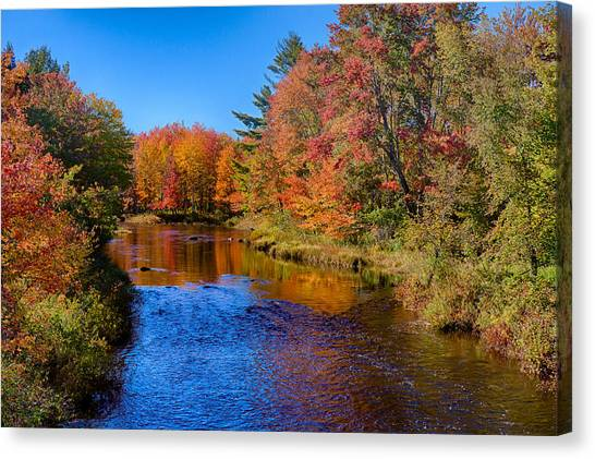 Maine Brook In Afternoon With Fall Color Reflection Canvas Print
