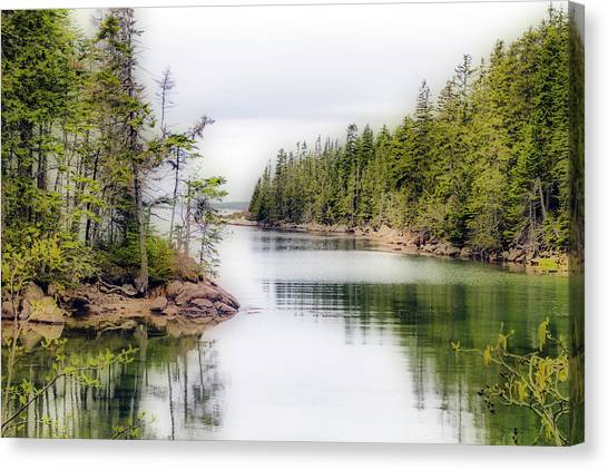 Canvas Print featuring the photograph Maine Cove  by Betty Pauwels