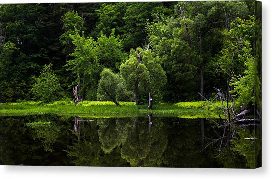 Maine Reflections Canvas Print