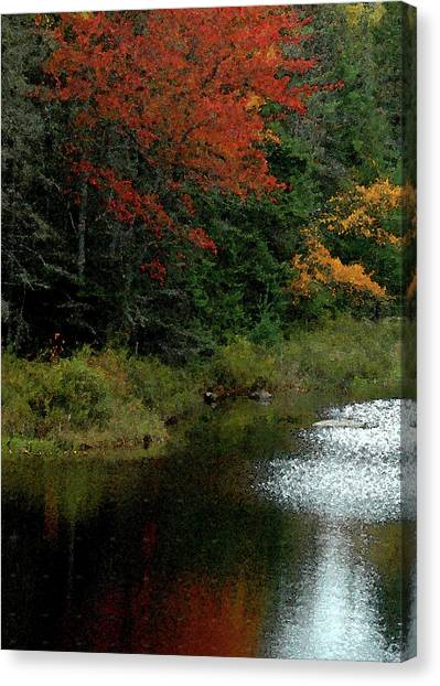 Maine Stream In The Fall Canvas Print
