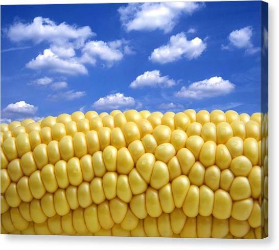 Corn Canvas Print - Maize by Victor De Schwanberg