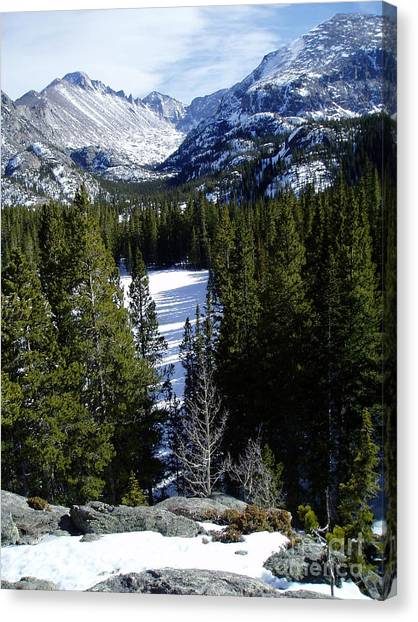 Majestic Canvas Print by Lindsay Felty
