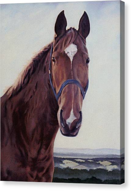 Majestic Roger- Chestnut Horse Canvas Print
