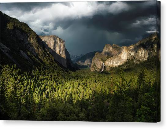 Cloud Forests Canvas Print - Majestic Yosemite National Park by Larry Marshall