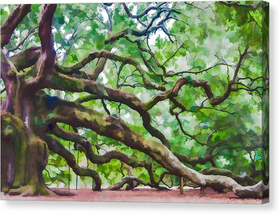 Majesty - The Angel Oak Canvas Print