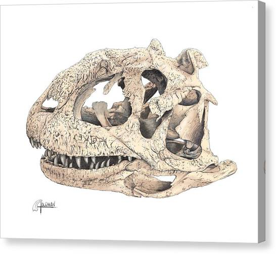 Majungasaur Skull Canvas Print