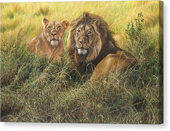 Canvas Print featuring the painting Male And Female Lion by Alan M Hunt