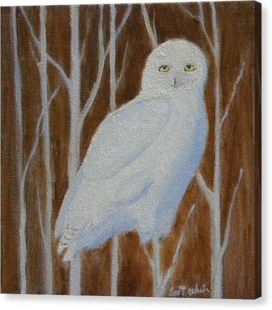 Male Snowy Owl Portrait Canvas Print