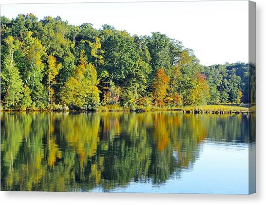 Mallows Bay Canvas Print