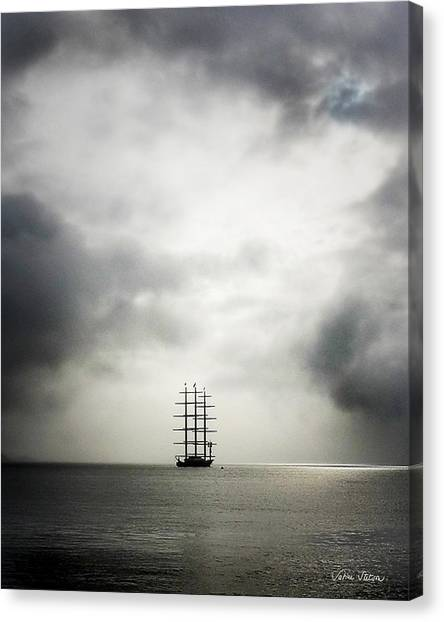 Canvas Print - Maltese Falcon by Sabine Stetson