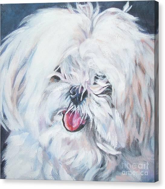 Maltese Canvas Print - Maltese by Lee Ann Shepard