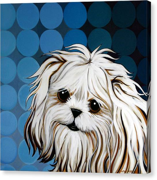White Maltese Canvas Print - Maltese Magic by Leanne WILKES