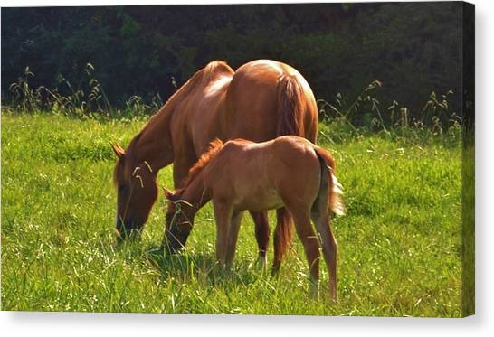 Mama And Baby Canvas Print